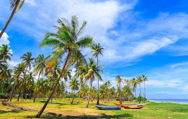 Kerala-Family-Trip-Booked-By-Mourima
