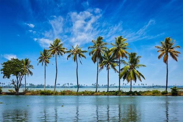 Perfect-Symphony-Of-Nature-Kerala-Honeymoon-Trip
